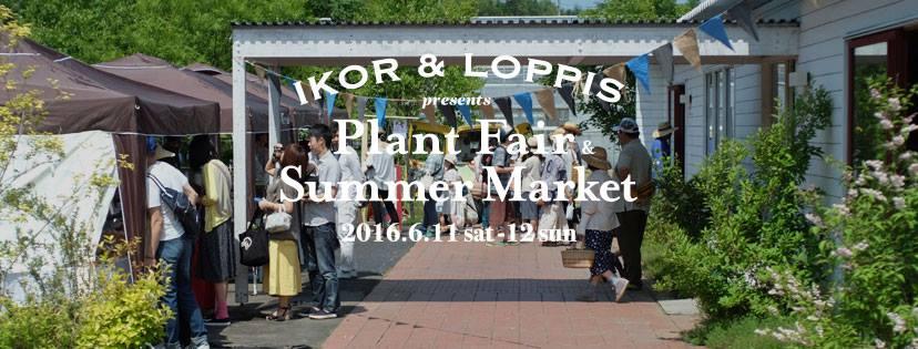 イコロの森  PLANT FAIR × LOPPIS SUMMER MARKET 2016