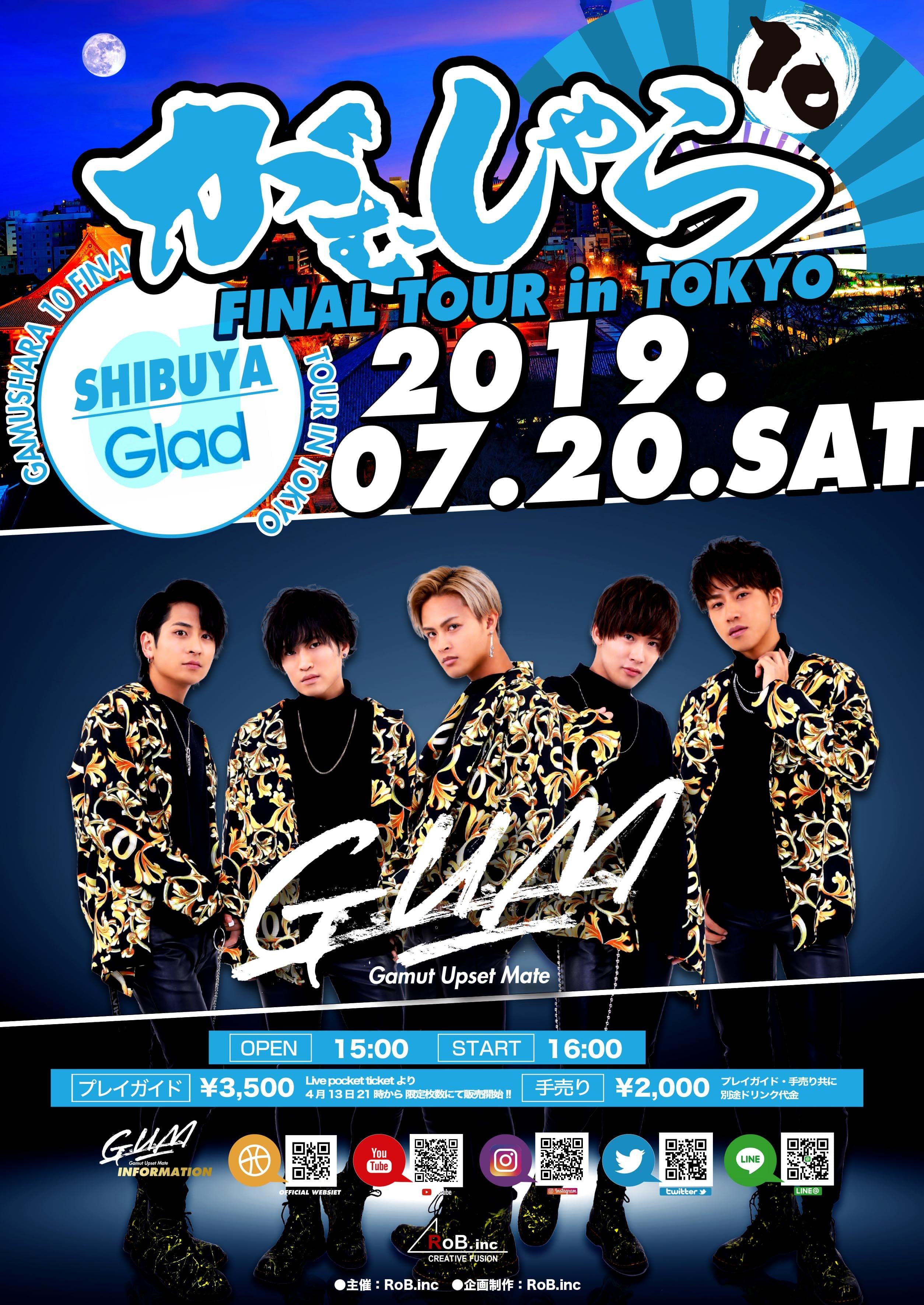 """""""がむしゃら10 -FINAL TOUR in TOKYO-"""""""