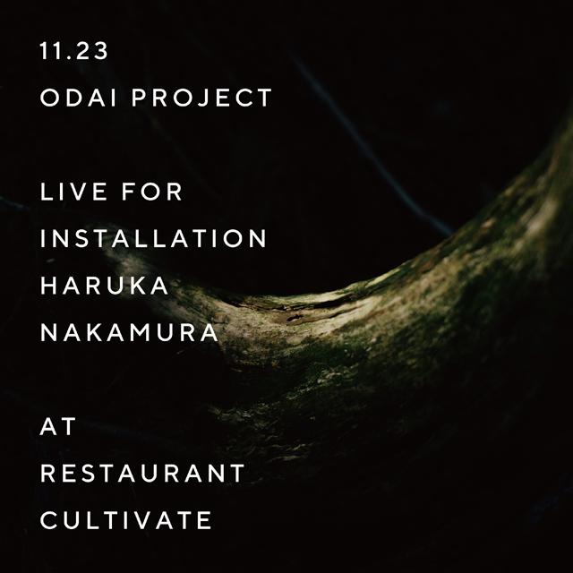 EXHIBITION ODAI PROJECT「Live for Installation haruka nakamura」