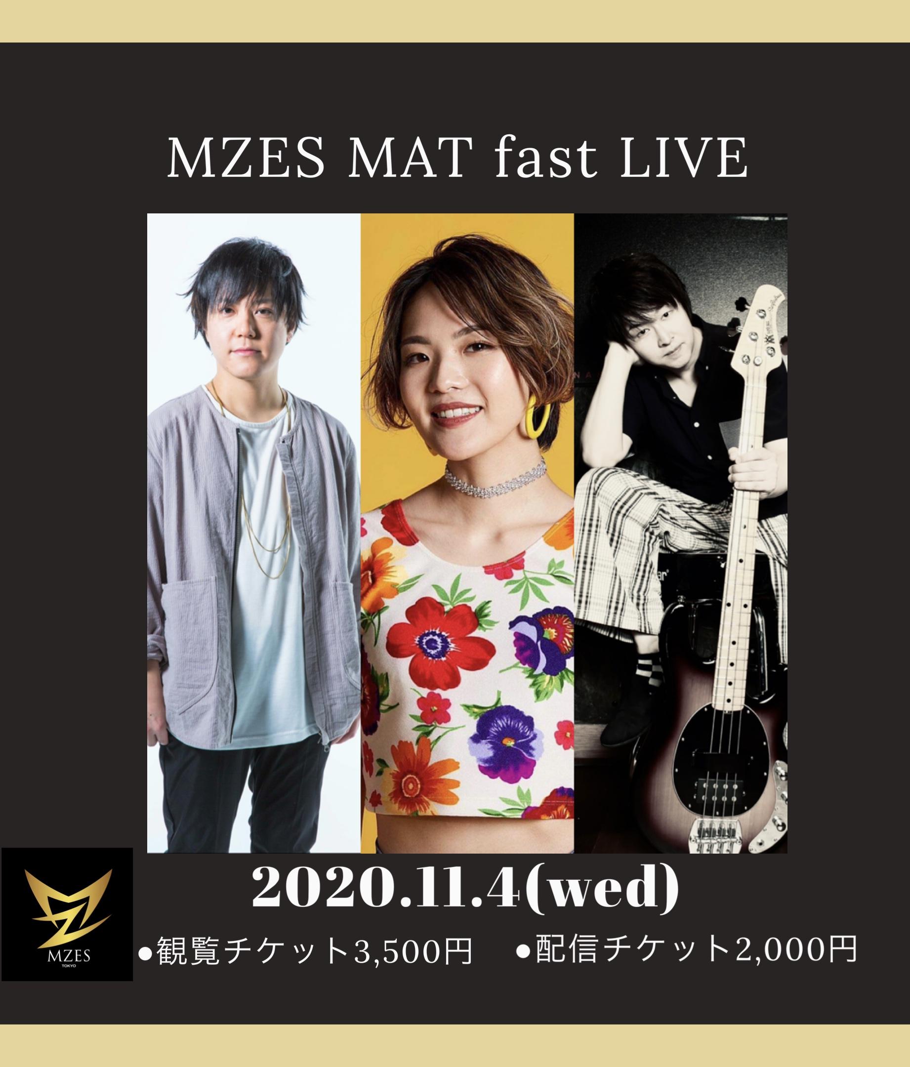 MZES MAT fast LIVE