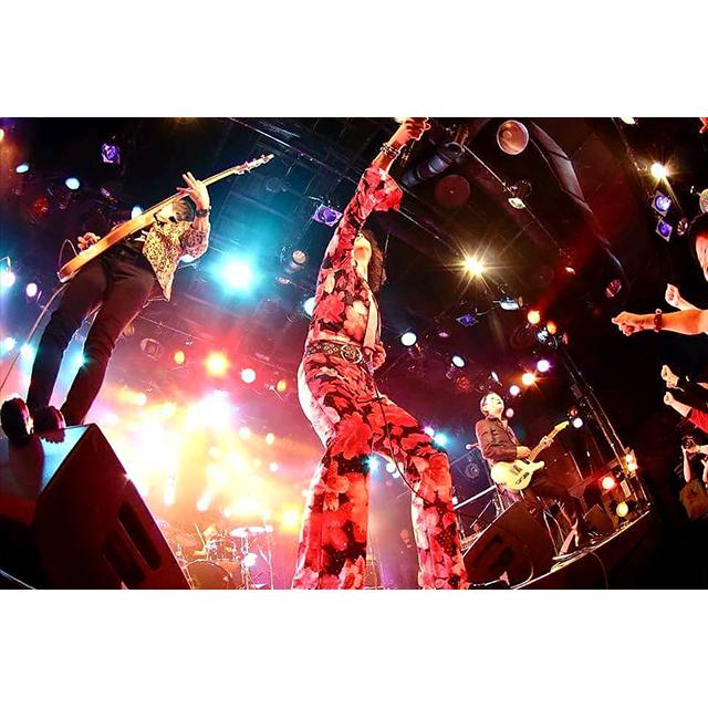 """騒音寺/KiNGONS/The HIGH : """"ROCK A GO GO PRESENTS「日本騒乱万博ツアー」"""""""