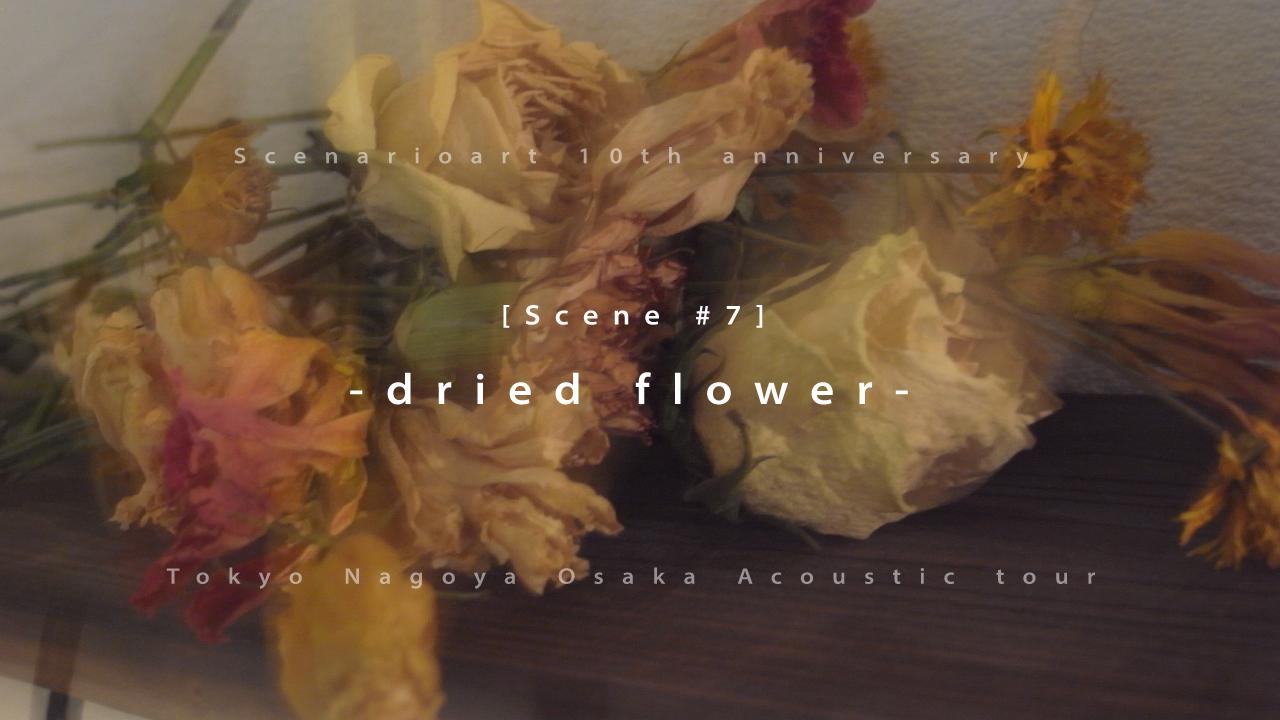 [Scene #7]-dried flower-《大阪公演》