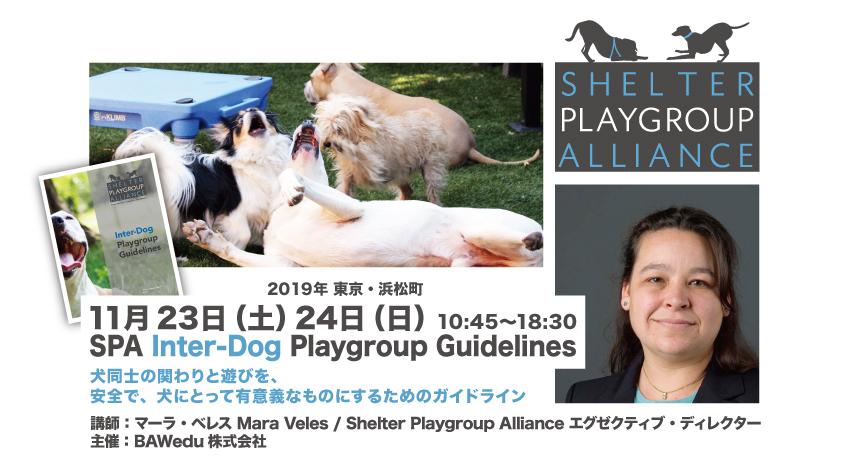 BAW Special 2DAY Seminar「SPA Inter-Dog Playgroup Guidelines 犬同士の関わりと遊びを安全で、犬にとって有意義なものにするためのガイドライン」