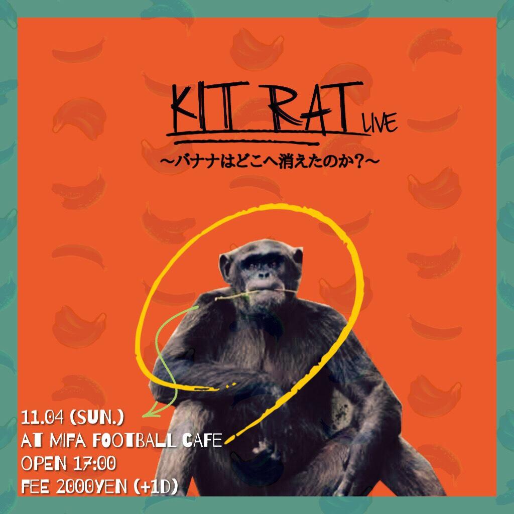 11/4 17:30~  きっとラット MIFA CAFE LIVE 〜バナナはどこに消えた?〜
