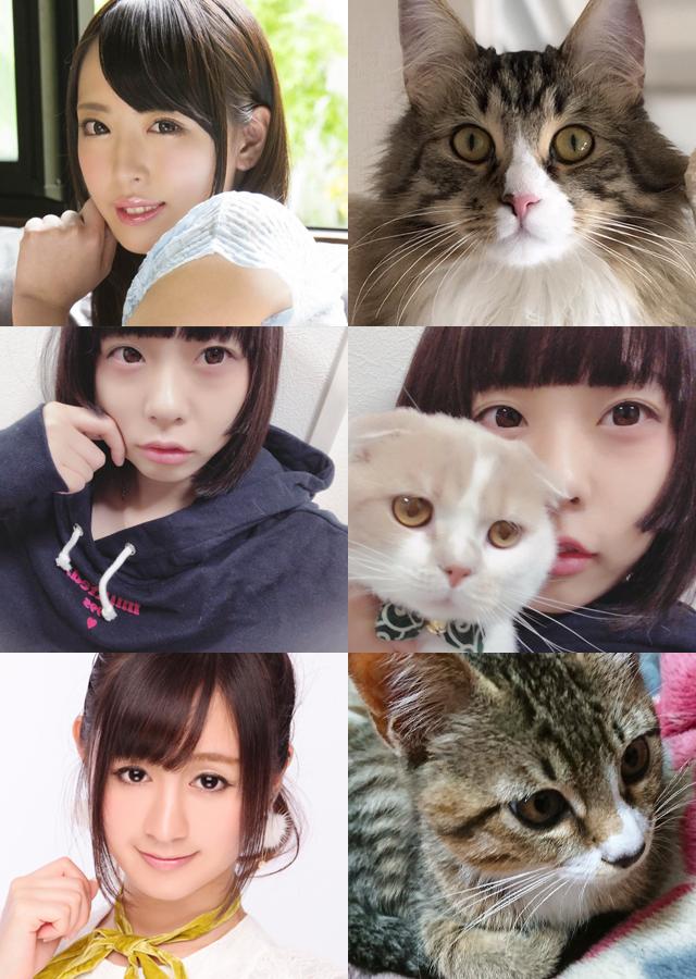 2/22は猫の日スペシャル!猫ちゃん大好きセクシー女優大集合!