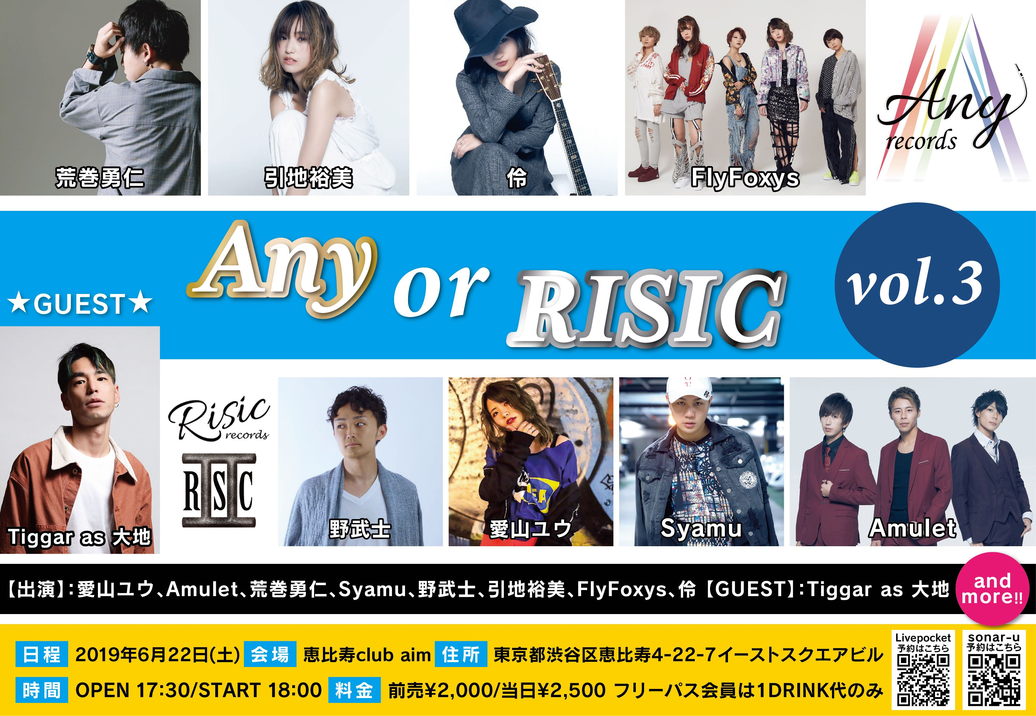 Any or RISIC vol.3