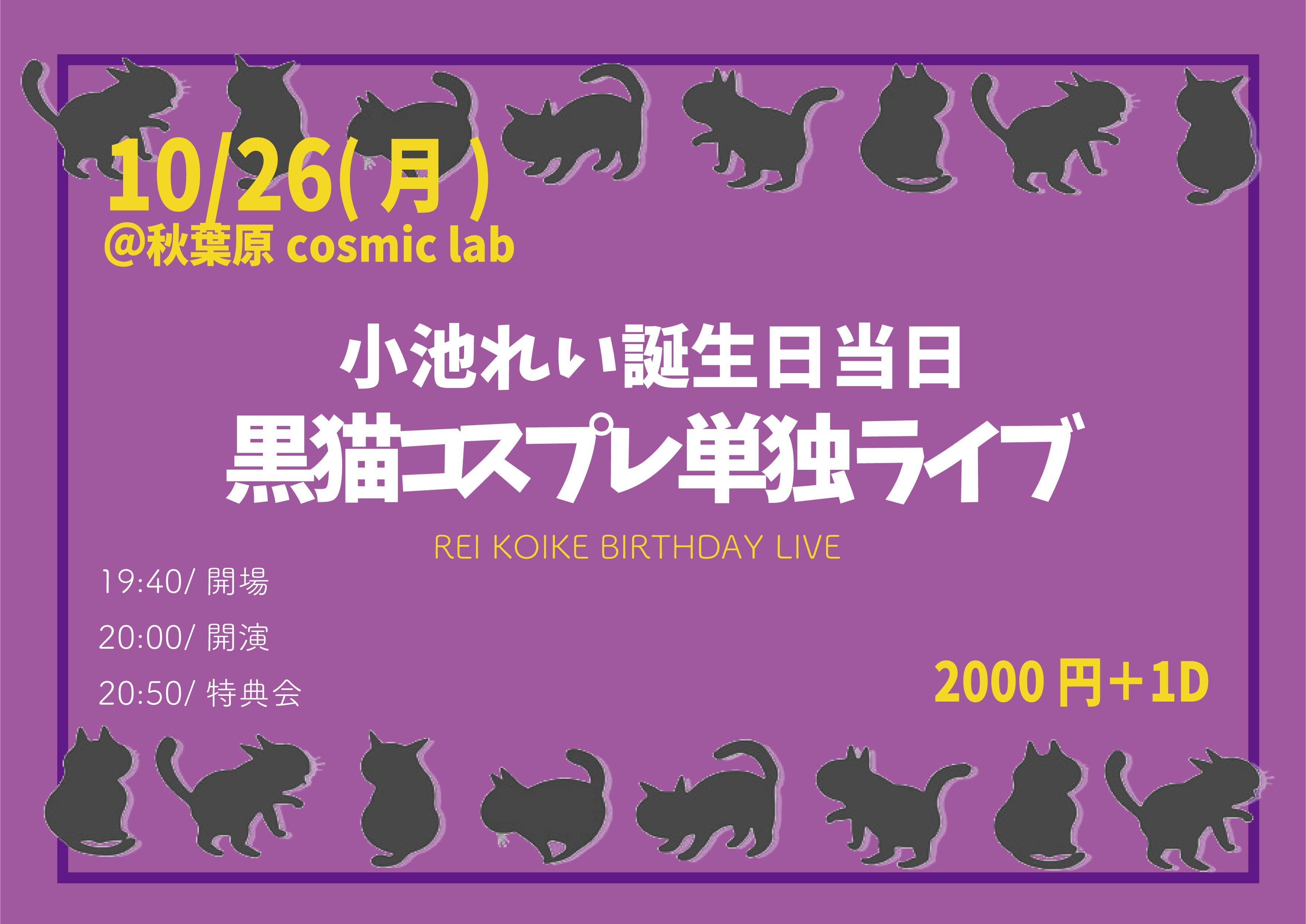 【小池れい誕生日当日】黒猫コスプレライブ