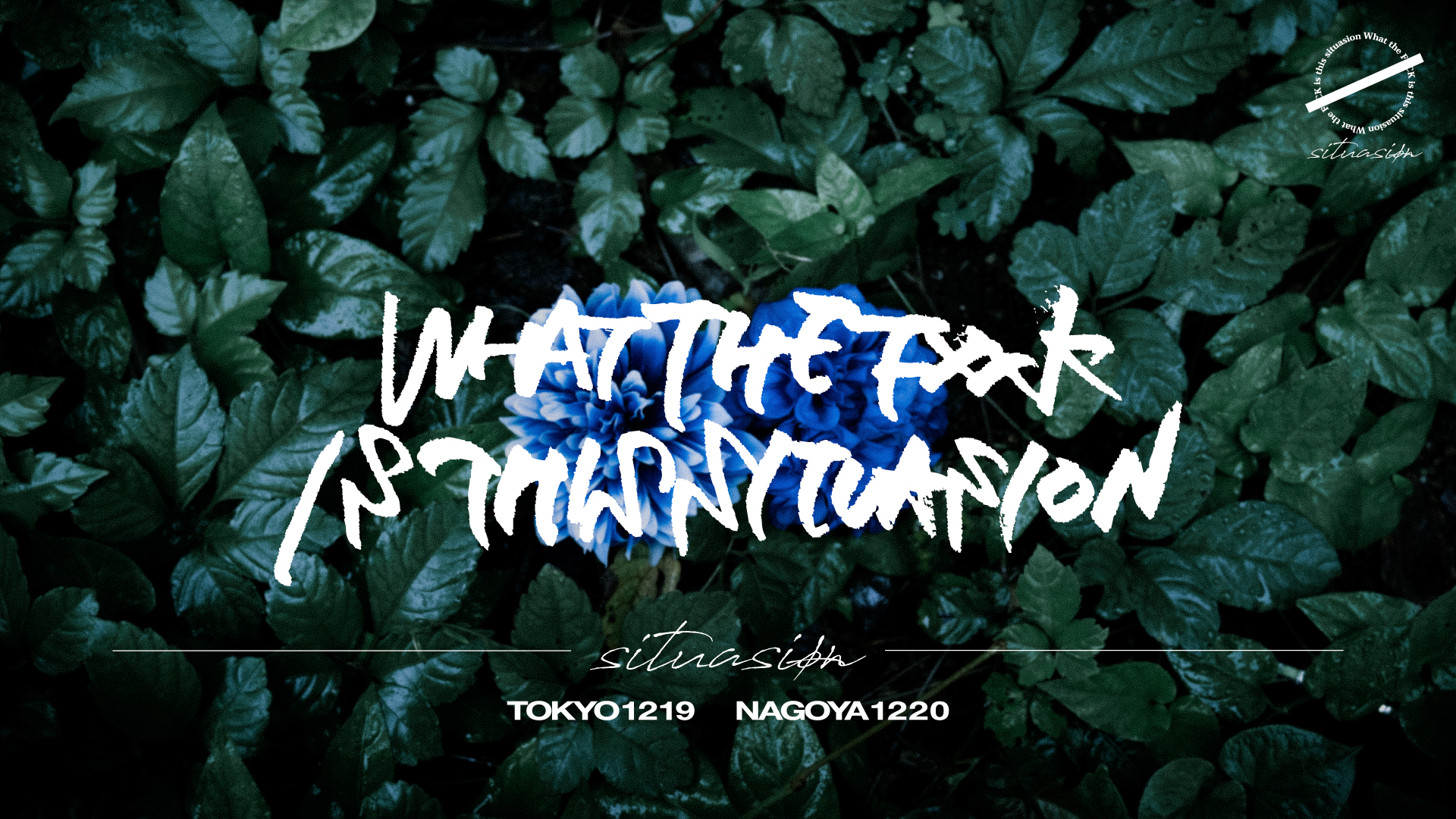 situasionデビュー単独公演「What the fxxk is this situation in TOKYO」