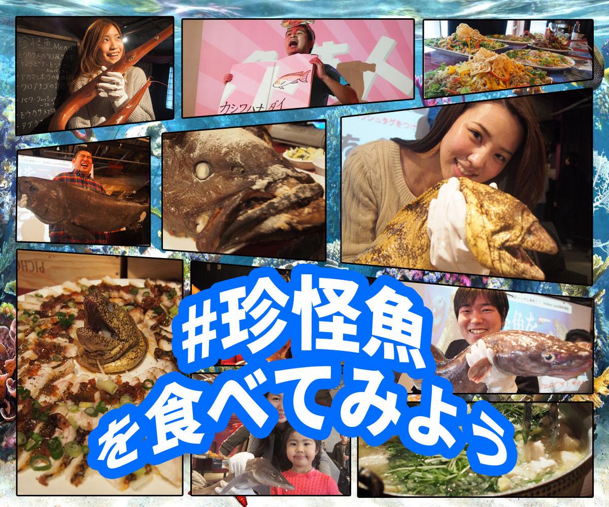 珍怪魚を食べてみよう