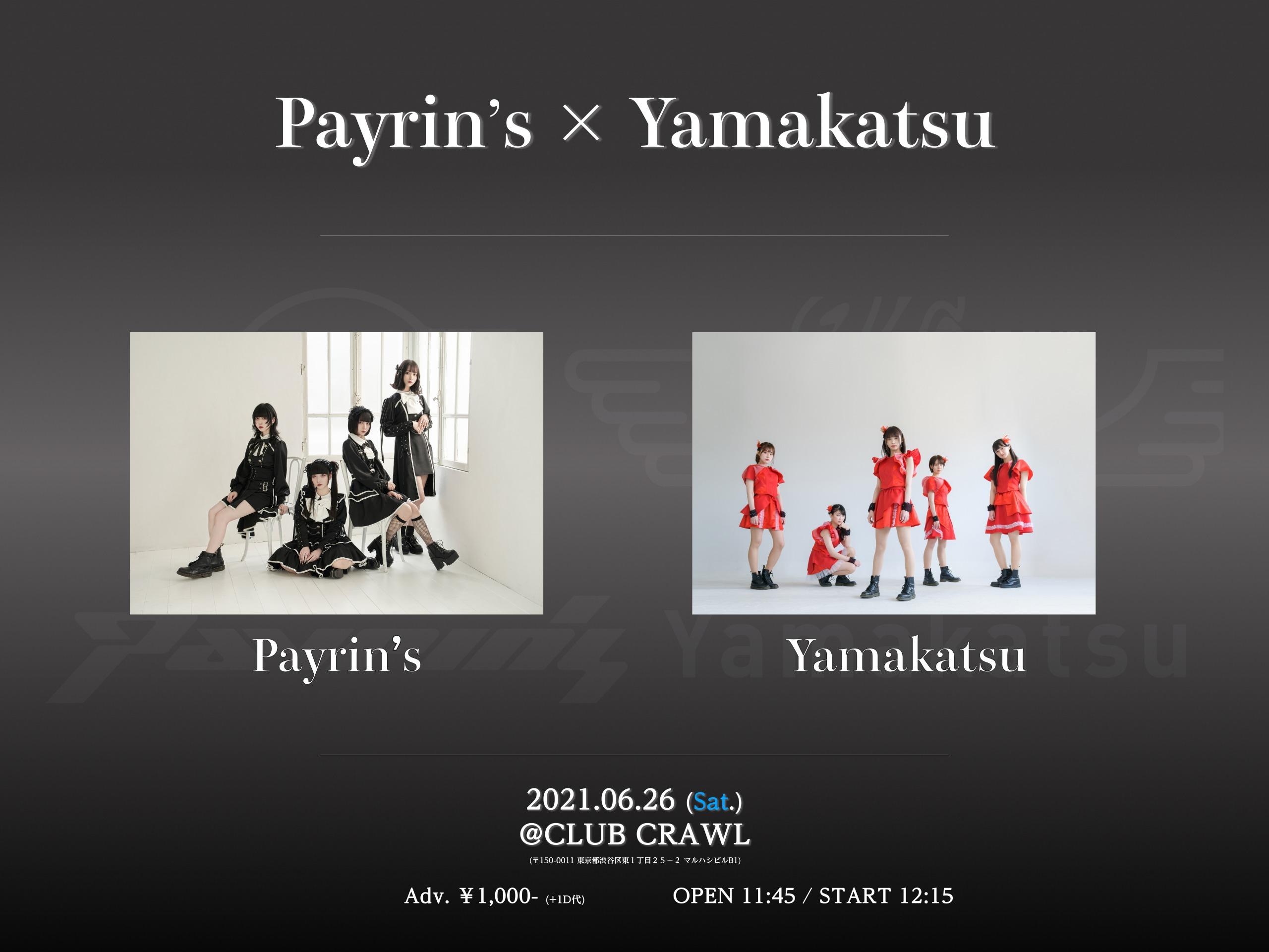 『Payrin's × Yamakatsu』