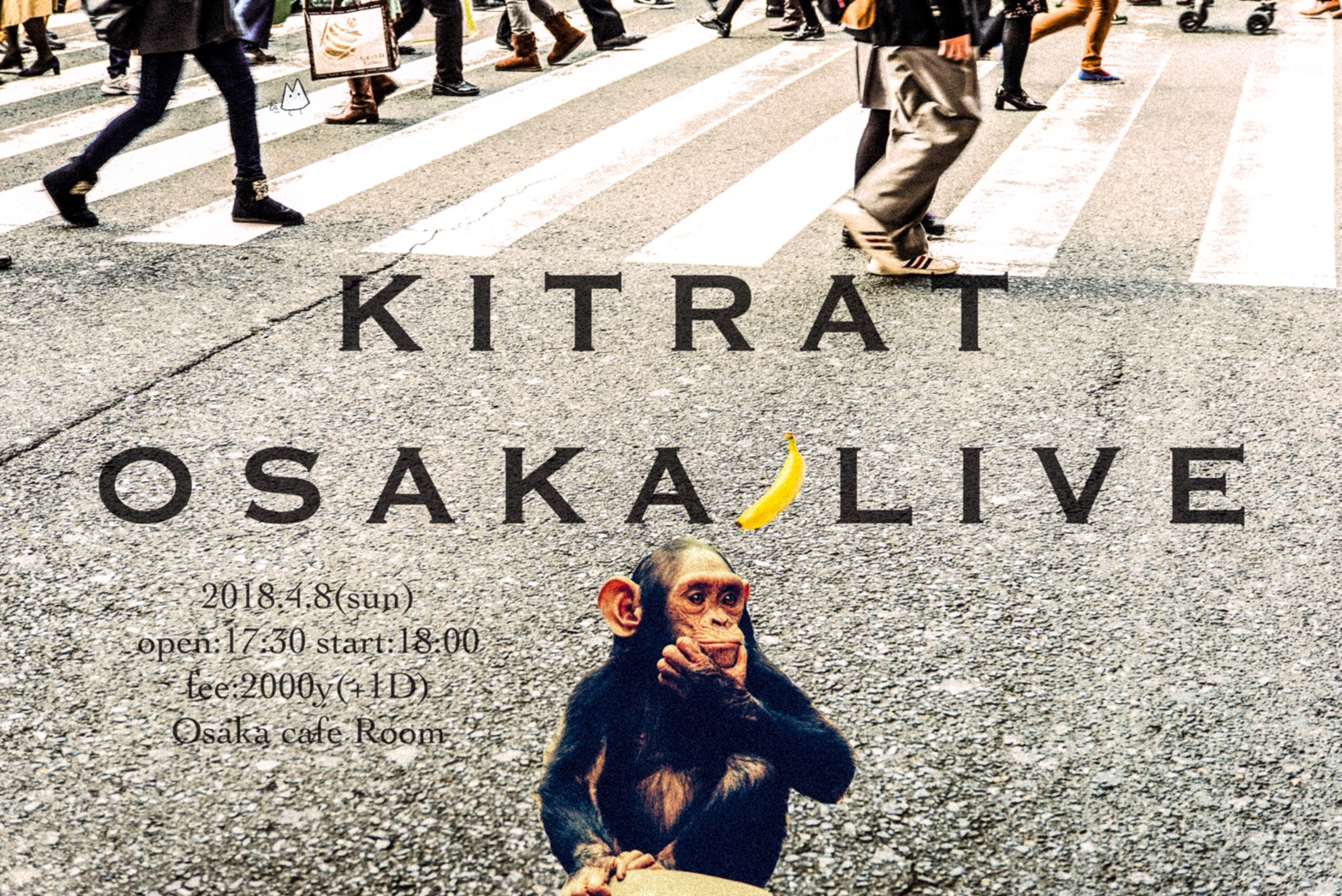 きっとラット LIVE @ 大阪 Cafe Room